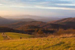 Max Patch Appalachian Valley - Photo by Taylor Johnson